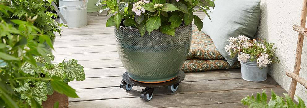 Plant Trolleys